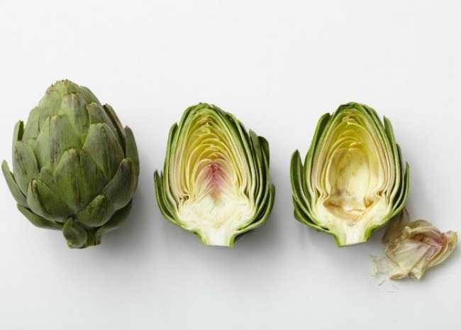 102344188-Raw-Artichoke-and-Cross-Section-Photo