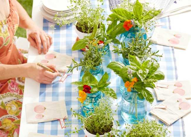 Fresh Table Decor - Herbs In Jars and Pots