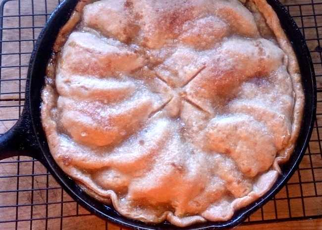 recipe: iron skillet apple pie recipe [38]