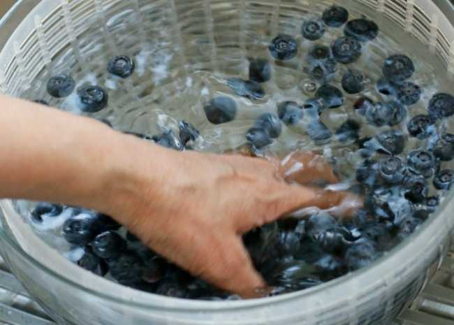 2015.06.14 Berries Vinegar Bath - 32 washing blueberries resized 650X465