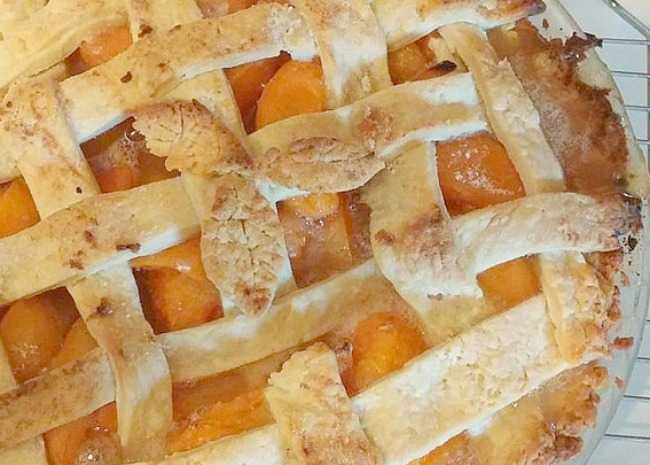 2352346-apricot-pie-photo-by-obadiah-650x465