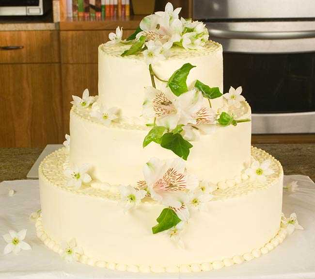 Decorating a wedding cake allrecipes decoratingweddingcake 5 finishedcake junglespirit Choice Image