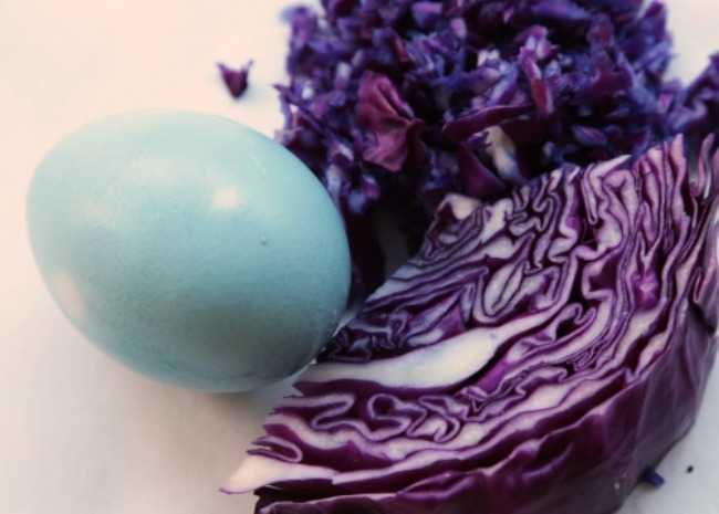 Natural Egg Dye: Sky Blue = Red Cabbage