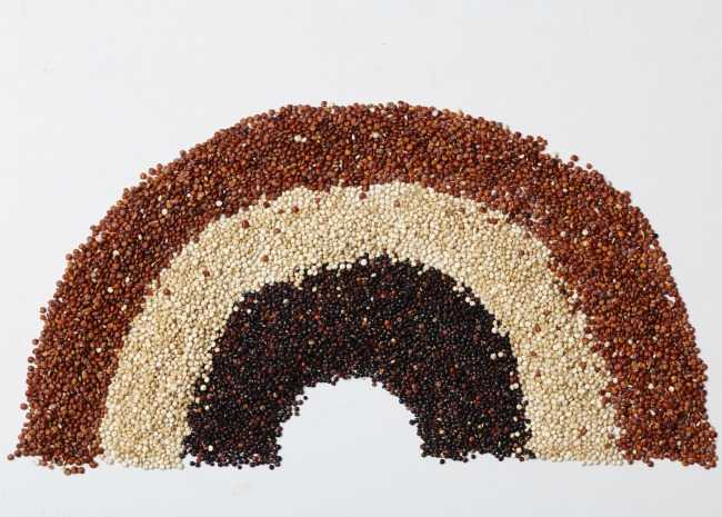 Rainbow of Quinoa