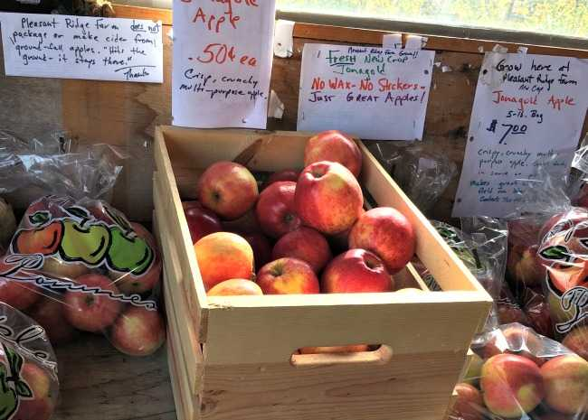 edited farm stand apples