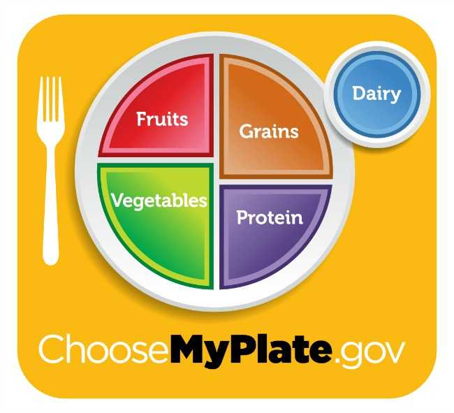 myplate_yellow_full plate