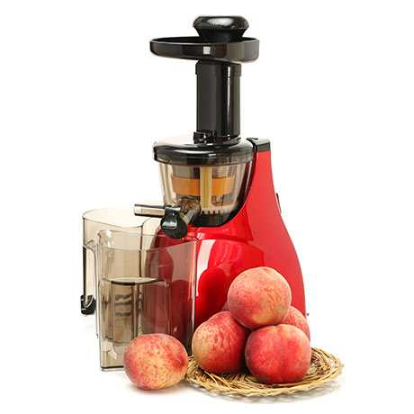 Slow Juicer No Fiber : Tips On How To Buy A Juicer Allrecipes