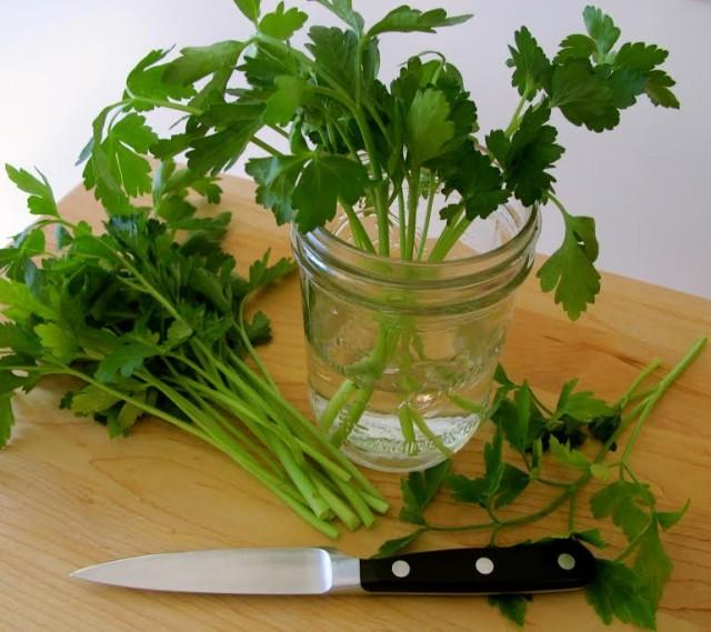 How To Store Fresh Parsley, Cilantro, and Other Leafy Herbs to Stay Fresh Longer